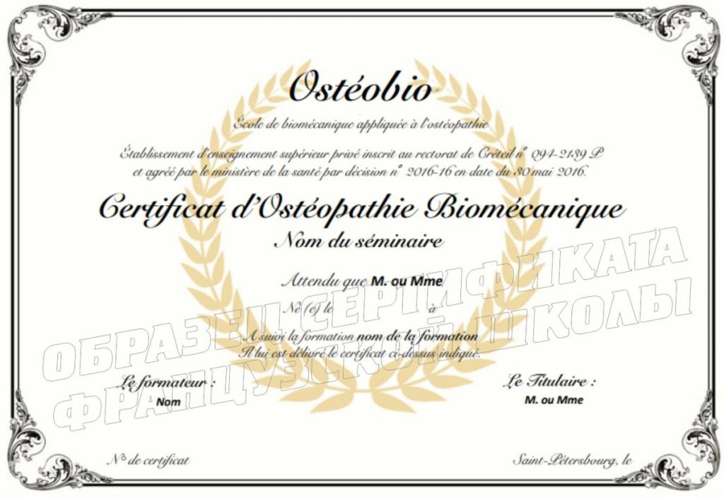 сертификат франц школы